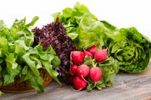 Senior Care McClean VA: Nutritional Health